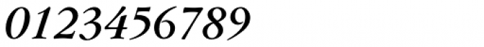 Flanker Garaldus Bold Italic Font OTHER CHARS