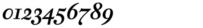 Fleischman BT Pro Bold Italic Font OTHER CHARS