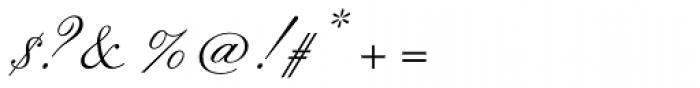 Flemish Script Std II Regular Font OTHER CHARS