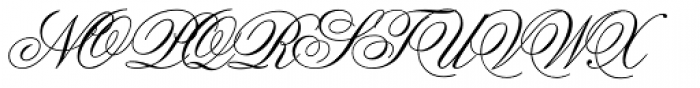 Flemish Script Std II Regular Font UPPERCASE