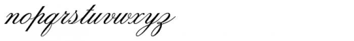 Flemish Script Std II Regular Font LOWERCASE