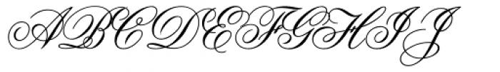 Flemish Script Font UPPERCASE