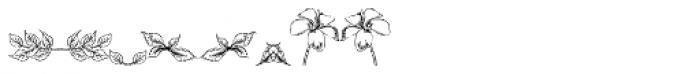Fleuraloha Font OTHER CHARS