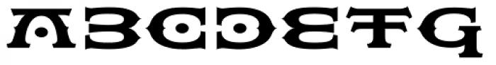 Flexion Pro Black Font UPPERCASE