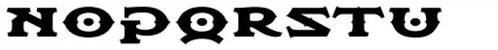 Flexion Pro Black Font LOWERCASE
