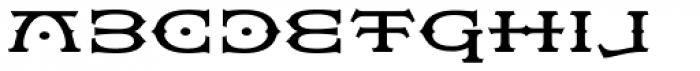 Flexion Pro Medium Font LOWERCASE