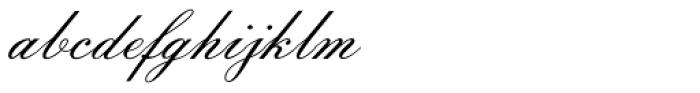 Florentine Script Std II Font LOWERCASE