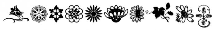 Flower Essences Medium Font OTHER CHARS