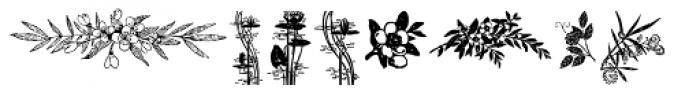 Flower Essences Medium Font UPPERCASE