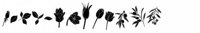Flower Sketch Neue Font LOWERCASE