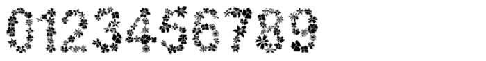 Flowertype Stencil Font OTHER CHARS