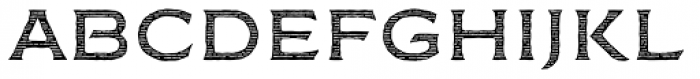 FM Bolyar Engraved Two NPro 500 Font LOWERCASE