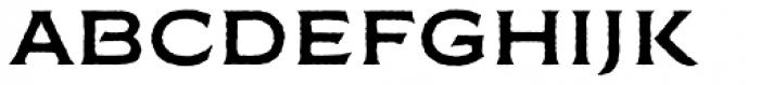 FM Bolyar Rough NPro 700 Font LOWERCASE
