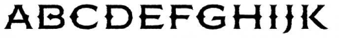 FM Bolyar Rough OPro 500 Font LOWERCASE