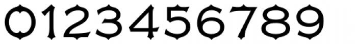 FMBolyar Ornate Pro 300 Font OTHER CHARS