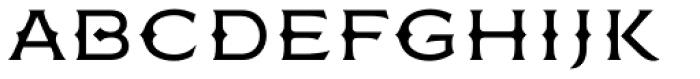 FMBolyar Ornate Pro 300 Font LOWERCASE