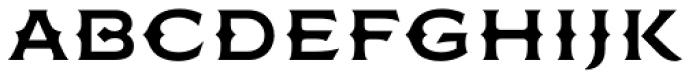 FMBolyar Ornate Pro 700 Font LOWERCASE