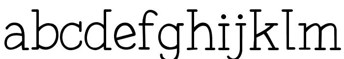 Fonesia Light Font LOWERCASE