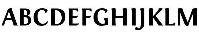 Fontin Bold Font UPPERCASE