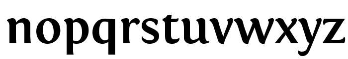 Fontin Bold Font LOWERCASE