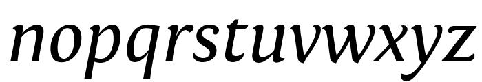 Fontin Italic Font LOWERCASE