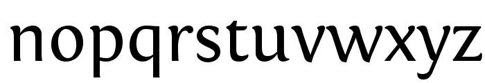 Fontin Regular Font LOWERCASE