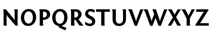 Fontin Sans Bold Font UPPERCASE