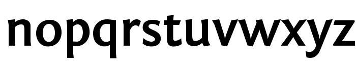 Fontin Sans Bold Font LOWERCASE