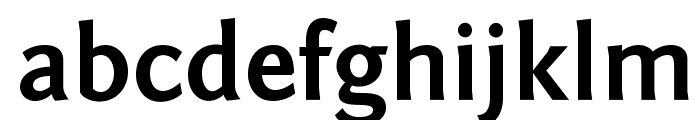 Fontin Sans CR Bold Font LOWERCASE