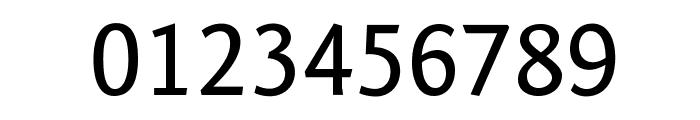 Fontin Sans CR SC Font OTHER CHARS