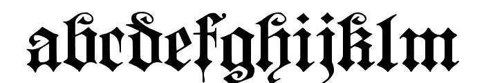 Fortuna Gothic FlorishC Font LOWERCASE