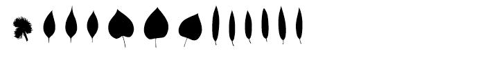 Fontfoliae Regular Font UPPERCASE