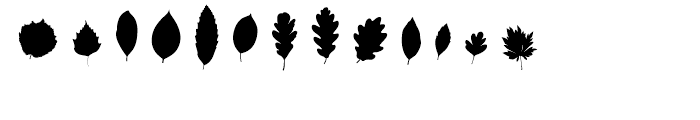 Fontfoliae Regular Font LOWERCASE