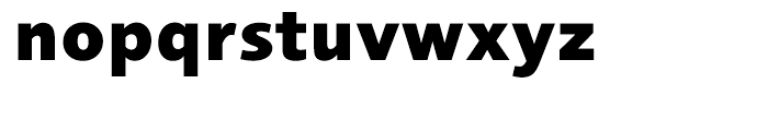 Foundry Sans Extra Bold Font LOWERCASE