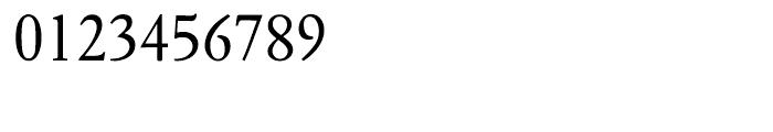 Fournier Regular Font OTHER CHARS
