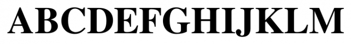 Foundation Roman Bold Font UPPERCASE