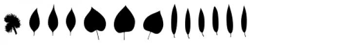 Fontfoliae Font UPPERCASE