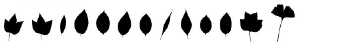 Fontfoliae Font LOWERCASE