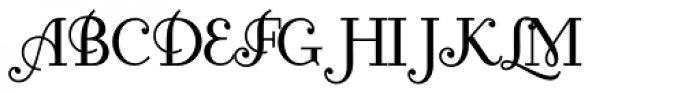 Fontleroy Brown NF Pro Font UPPERCASE