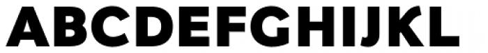 Fox Grotesque Alt Black Font UPPERCASE