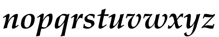 FPL Neu Bold Italic Font LOWERCASE