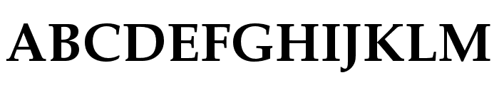 FPL Neu Bold Font UPPERCASE