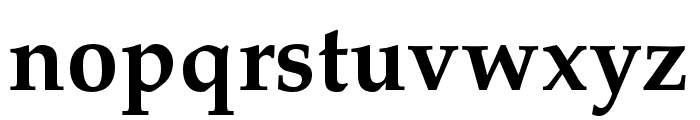 FPL Neu Bold Font LOWERCASE