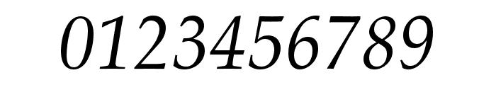 FPL Neu Italic Font OTHER CHARS