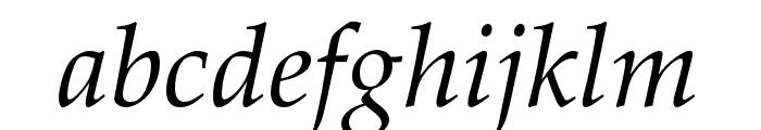 FPL Neu Italic Font LOWERCASE