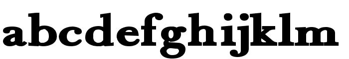 Fradley Black Font LOWERCASE