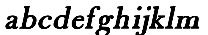 Fradley Bold Italic Font LOWERCASE