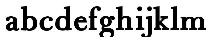 Fradley Bold Font LOWERCASE