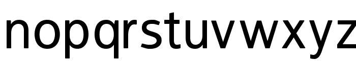 FranKleinMedium Font LOWERCASE