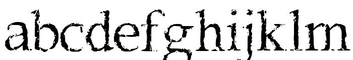 Frank Black Font LOWERCASE